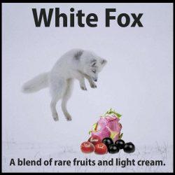 white-fox-thumbnail-01-01-02-02